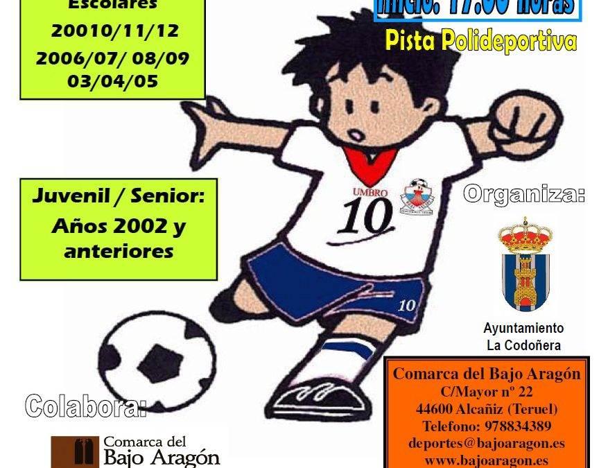 Torneo de Fútbol Sala. La Codoñera. 01 y 02 de Agosto