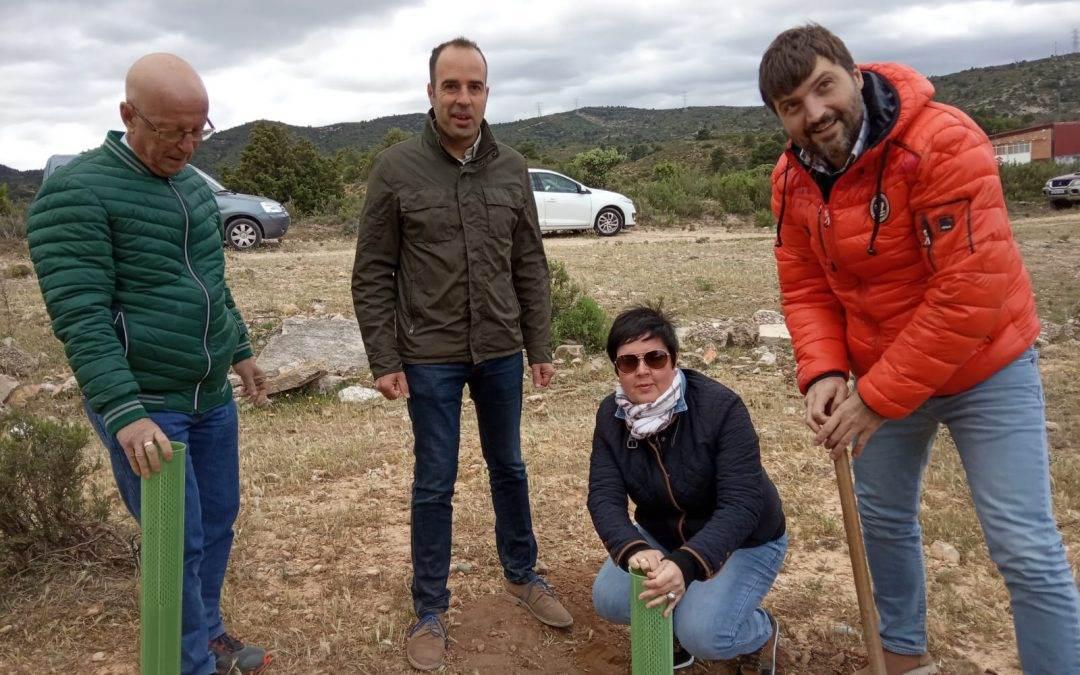 La Comarca del Bajo Aragón  y el Ayuntamiento de Aguaviva, en colaboración con el AMPA La Font, han celebrado el Día del Árbol  en la localidad de Aguaviva el día 19 de mayo.