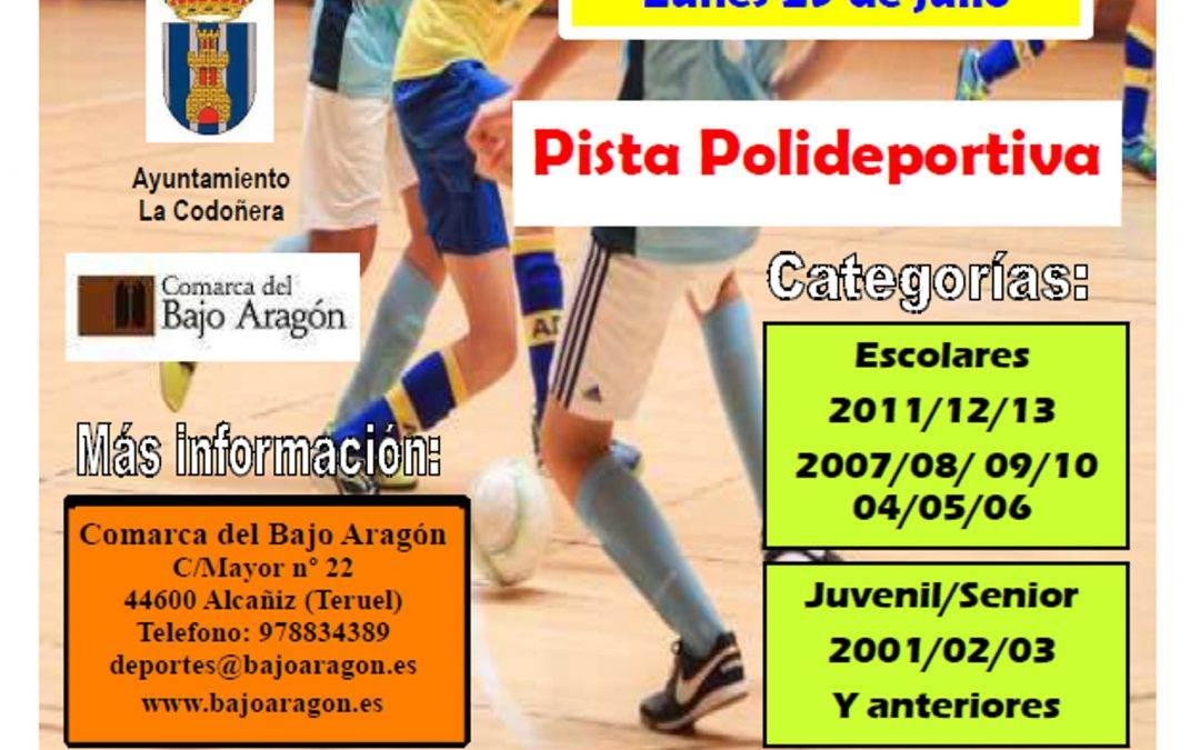 Torneo de Fútbol Sala en La Codoñera; 31 de Julio y 01 de Agosto.