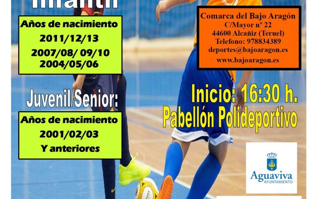 Torneo de Fútbol Sala en Aguaviva, 06 y 07 de Agosto.
